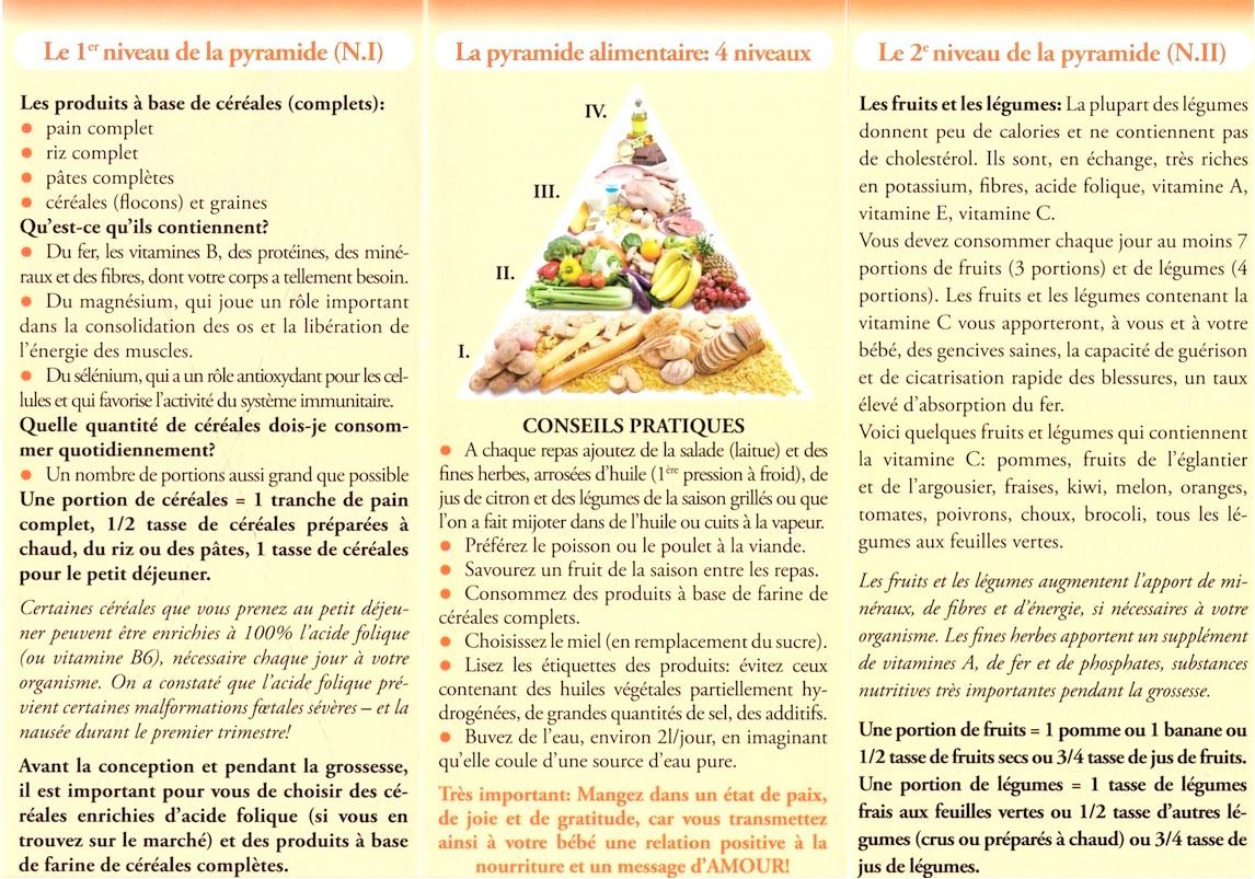 L'alimentation durant la grossesse (I+II)