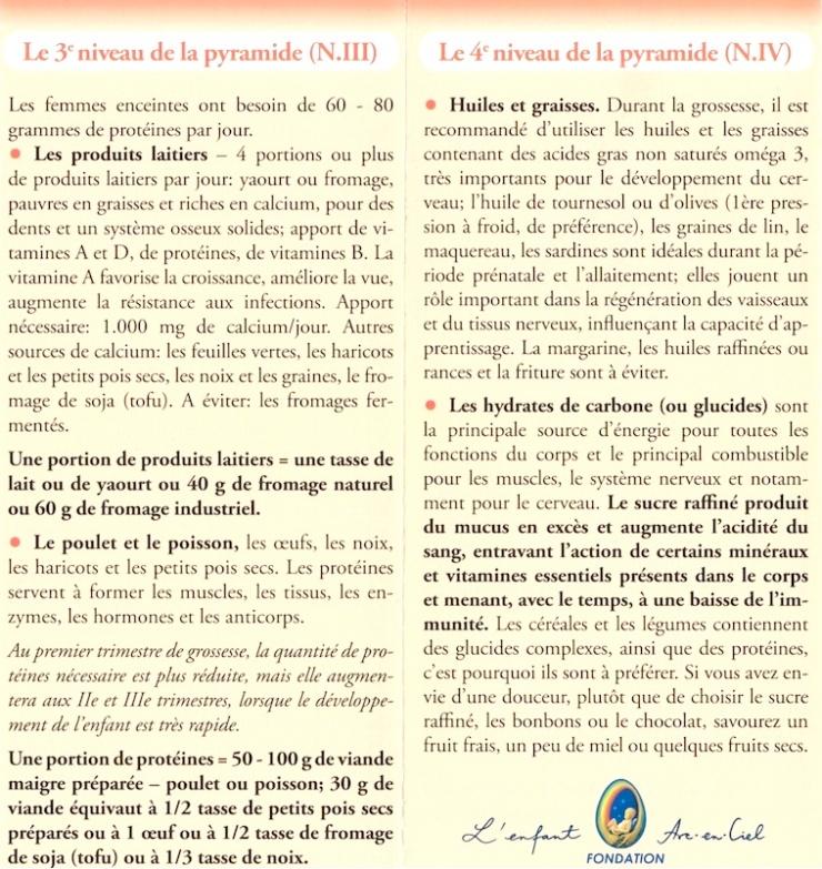 L'alimentation durant la grossesse (III+IV)